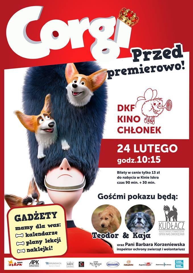 Plakat: Corgi, psiak królowej